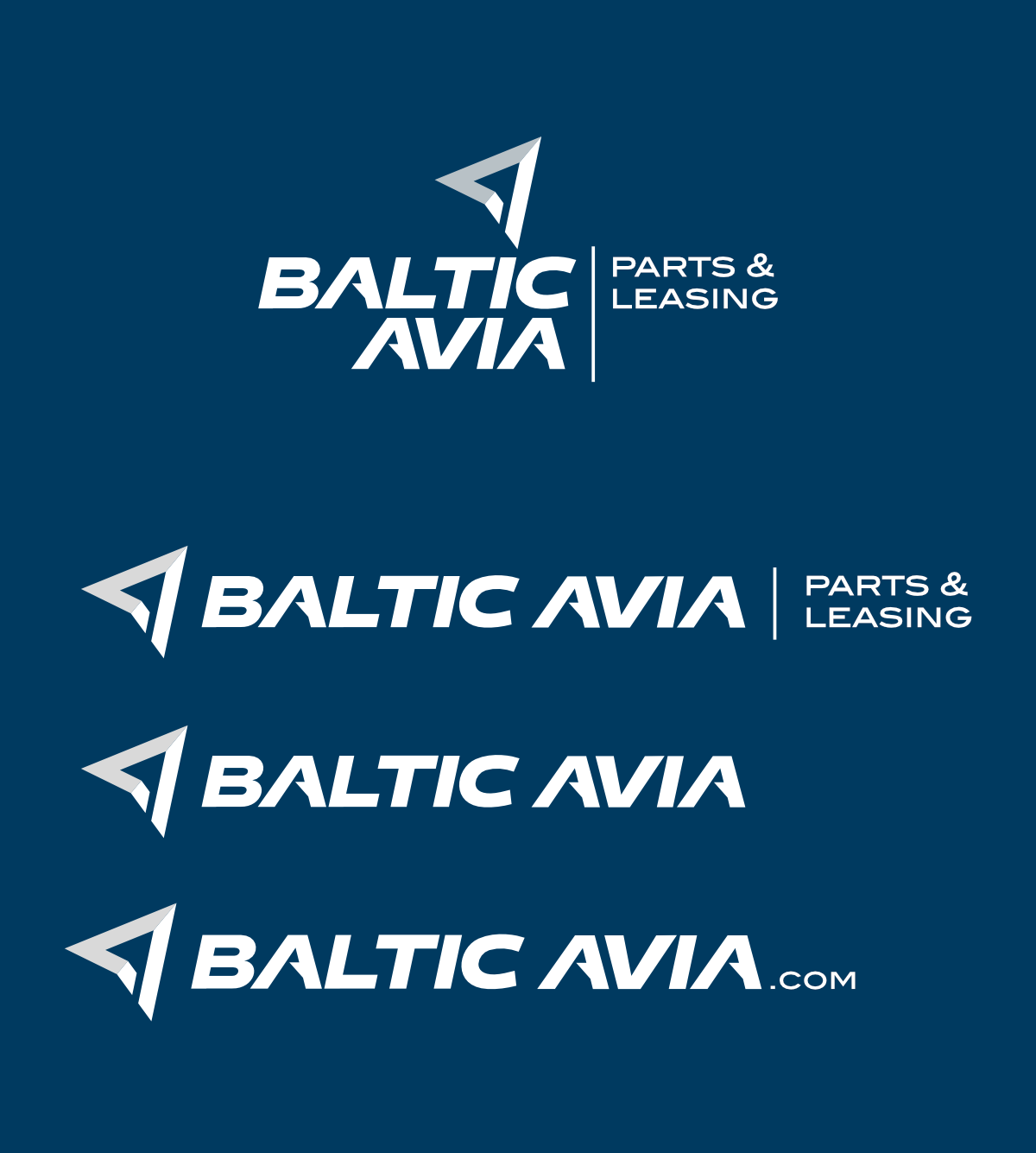 baltic avia branding big